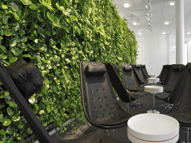 green-design-cool-office-2